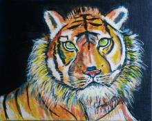 tigre du Bengal - ARTEC