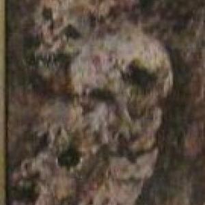 Portrait de harai